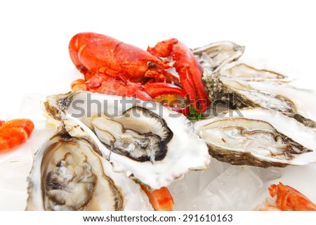 Various fresh seafood on white background - stock photo
