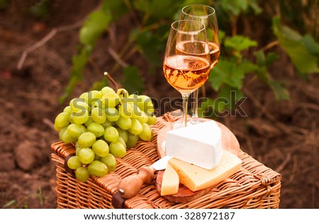 Various sorts of cheese, Two glasses of white wine in the vineyard. selective Focus - stock photo