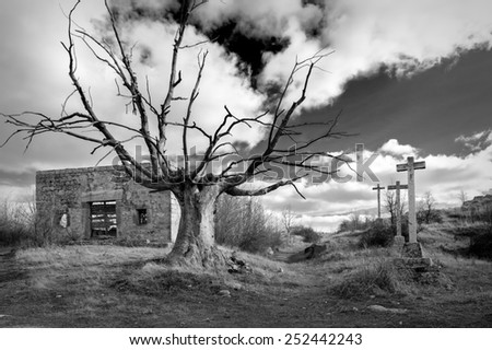 various stone crosses with tree and abandoned house - stock photo