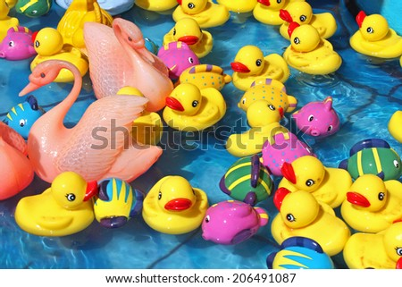 Various toy ducks in water - stock photo