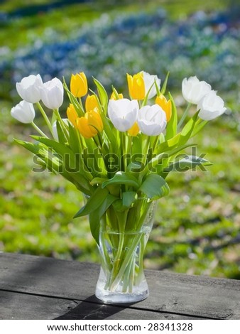 Vase full of white and yellow Tulips - stock photo