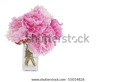 vase of pink peony flowers isolated on white background - stock photo
