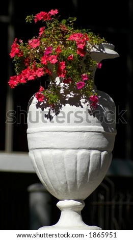 vase with flower in the full blaze of the sun - stock photo