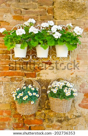 Vases and baskets of white flowers hung on a wall in Monteriggioni, Tuscany, Italy - stock photo
