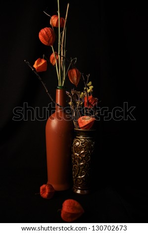 Vases with physalis - stock photo