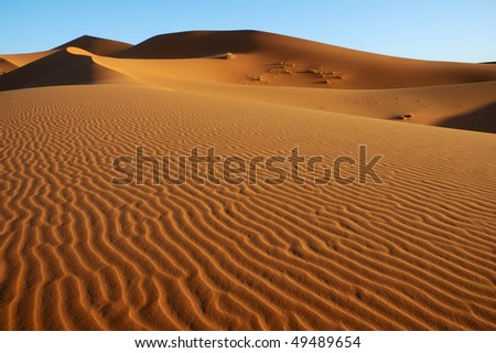 Vast dune landscape - stock photo