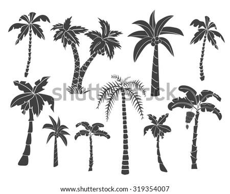 Vector set of black silhouettes of tropical leaves, palm trees, foliage. Hand drawn design elements of a tropical nature. Stylized images and simple shapes for logos and natural decor. Raster version. - stock photo