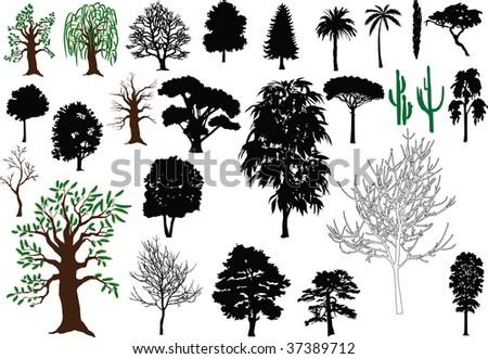 vector trees - stock photo