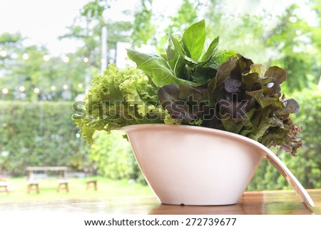 Vegan Healthy fresh green salad in a white ceramic bowl  - stock photo