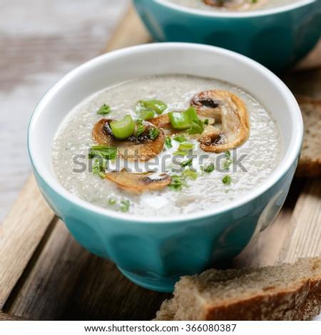 vegan mushroom cream soup - stock photo