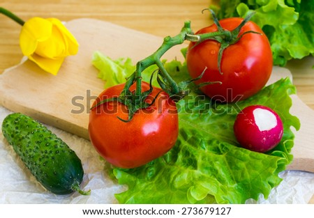 Vegetable cocktail with tomatoes and cucumber tulip - stock photo
