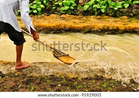 Vegetable gardeners are watering with the old ways. - stock photo
