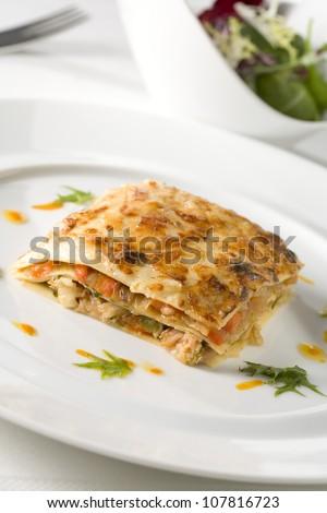 Vegetable lasagnes - stock photo