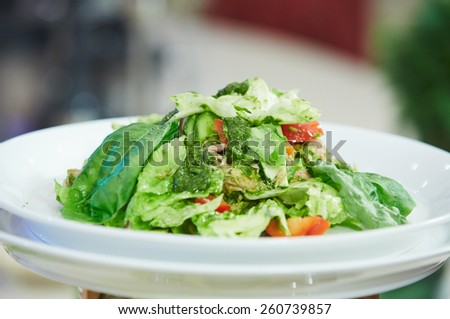 vegetable salad on a plate - stock photo