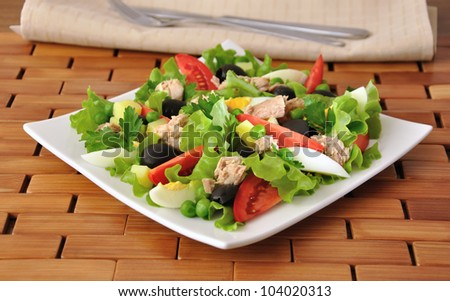 Vegetable salad with tuna, egg and olives - stock photo