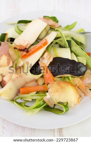 vegetable skin in the white plate - stock photo