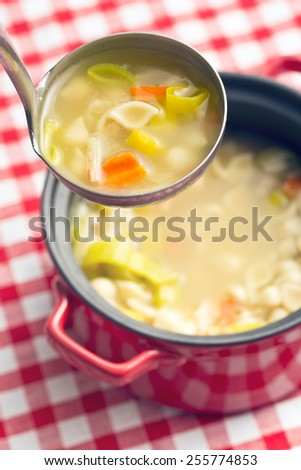 vegetable soup with pasta in soup ladle - stock photo