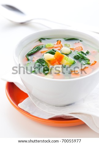 vegetable soup with potato,carrot,celery and spinach - stock photo