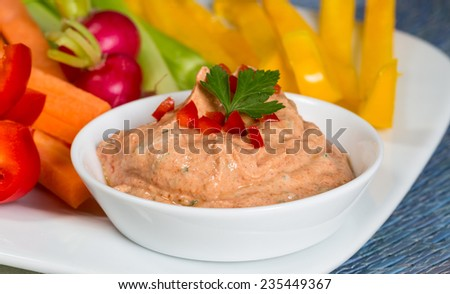 Vegetable sticks with herb and tomato dip. - stock photo
