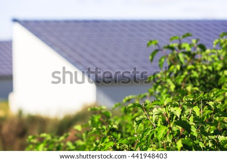 vegetable with Photovoltaic Solar Panels on background, ecologic concept - stock photo