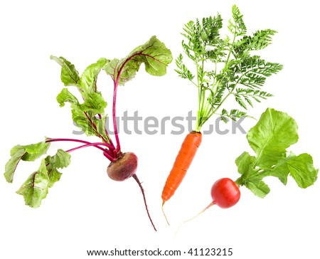 vegetables collection  isolated on white - stock photo