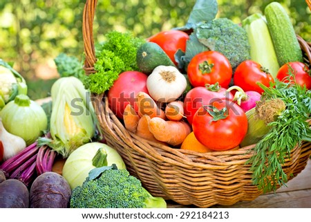 Vegetables - Fresh vegetables - stock photo