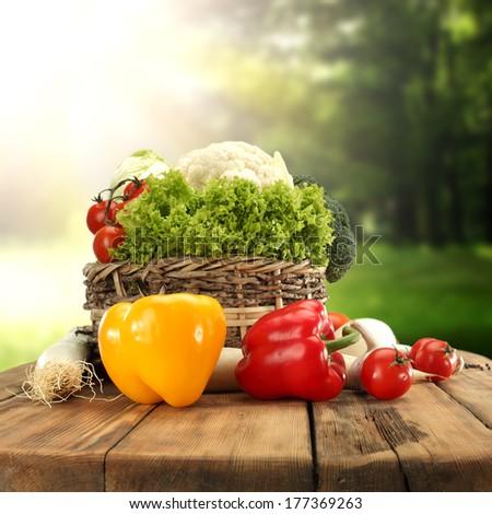 vegetables in garden  - stock photo