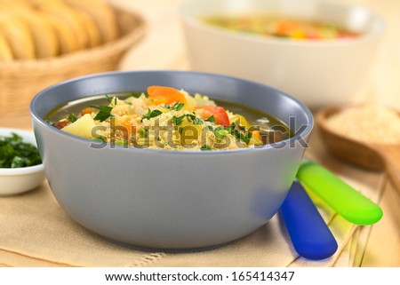 Vegetarian quinoa soup with carrot, potato, celery, pumpkin, leek and tomato, sprinkled with parsley and scallion (Selective Focus, Focus one third into the soup) - stock photo