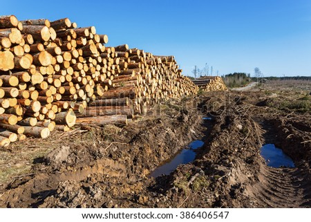 Vehicle damage in the ground at a depots for timber - stock photo