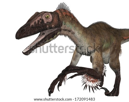Velociraptor - stock photo