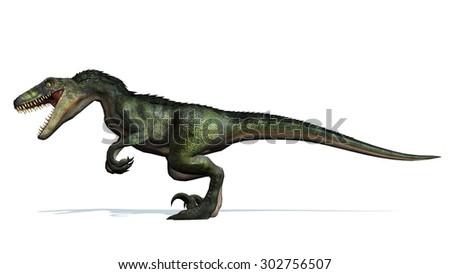 velociraptor dinosaur attack - isolated on white background - stock photo