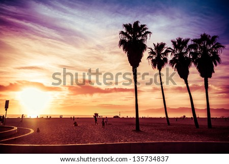 Venice Beach. Sunset. Summer concept - stock photo