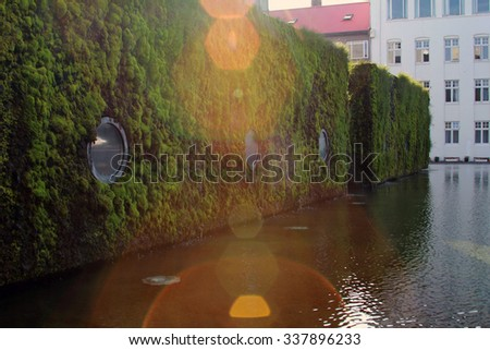 Vertical landscaping on the walls of the building.  Reykjavik. Iceland. - stock photo