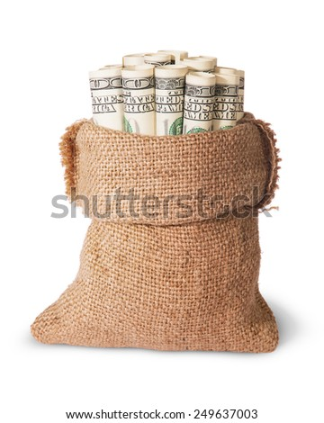 Vertical money in the bag isolated on a white background - stock photo