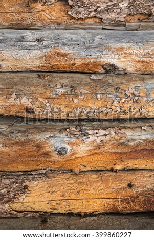 vertical orientation close up color image of weathered log cabin exterior wall with copy space as a background / Vintage Log Cabin Exterior Wall - Vertical - stock photo