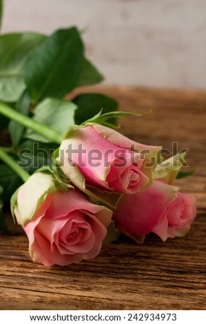 Vertical Photo of three beautiful tender roses placed on old worn wooden board with significant grooves and texture. - stock photo