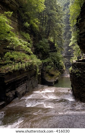 Vertical photo showing a gorge in the finger lakes region of New York. - stock photo