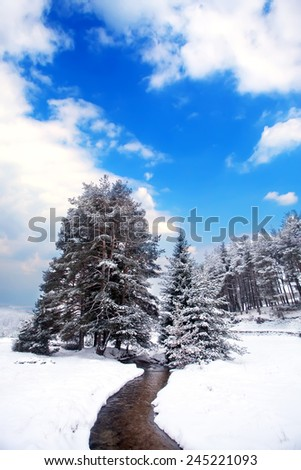 vertical winter landscape with cold mountain stream and several trees covered with snow  - stock photo