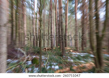 Vertigo zoom blurred winter woods. - stock photo