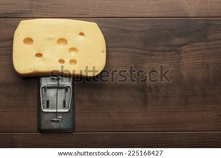 very big piece of cheese in mousetrap concept - stock photo