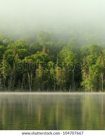 very calm lake and forest in the morning - stock photo