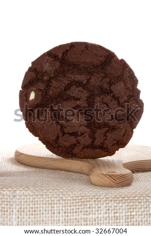 very chocolaty american style cookie free standing on wooden board, white backdrop, shallow DOF - stock photo