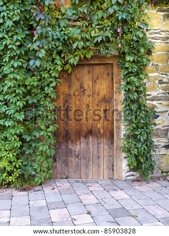 very old wood door - stock photo