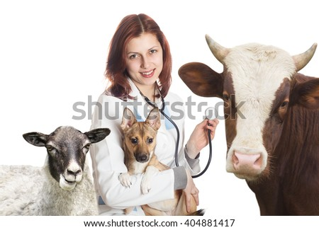 vet and animals - stock photo