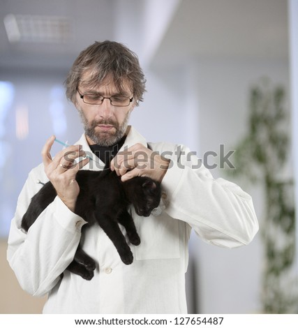 vet had injected kitten to the clinic - stock photo