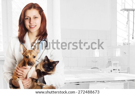 veterinarian and dog and cat at the clinic - stock photo