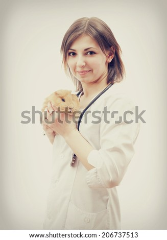 veterinarian and guinea pig - stock photo