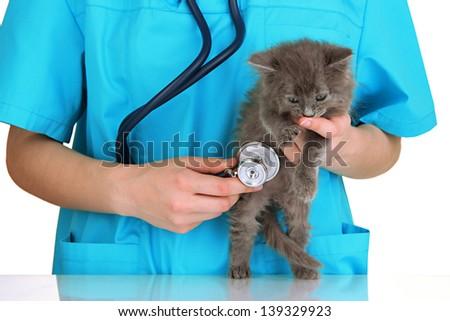 Veterinarian examining kittens isolated on white - stock photo