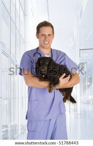 Veterinarian holding a black dog. - stock photo