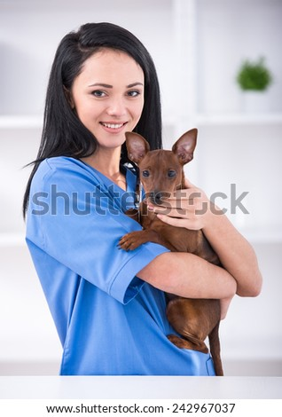 Veterinary clinic. Female veterinarian is holding a dog. - stock photo